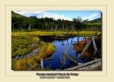 Parque Nacional Tierra de Fuego 2020 USHUAIA ARGENTIA