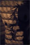 art_nude