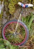 29 Unicycle