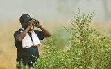 Modou Jarju searching for something good