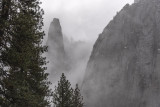 10 Jan 2019, a cold foggy day in the Yosemite valley