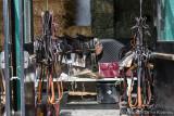 Saddles, Harnesses & Bridles