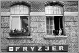 From the window,  Krakow