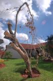 WILMA 2005