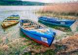 1391. Three little boats