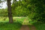 Between two fields