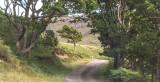 In Ardnamurchan