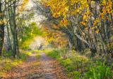 Clatto Country Park