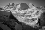 Shackleton_091417_012-3.jpg