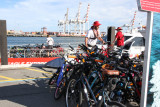 Docked 7 AM in Fremantle, walked to ferry terminal to take ferry to Rottnest Island. Bikes were being loaded on the ferry.