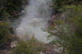 Drove to Wai-o-tapu thermal area past Rotorua.  Whole area around there is thermal.
