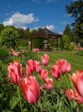 Burnby Hall - gardens. near Pocklington, east Yorkshire