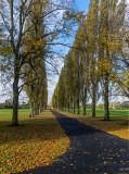 Peter Pan Park, Hull IMG_7705.jpg