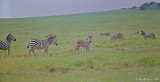 Tanzania and Kenya - February 1987