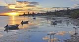 Sunrise over Augusta's Colour Patch