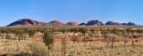 DSC_5557_Panorama.jpg
