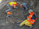 Opgravingen Blauwpoort Vianen