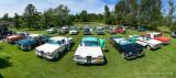 20200725 Edsel Rally web-.jpg