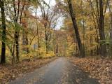 PCA Chesapeake's 2019 Fall Colors Tours -- Oct. 27 & Nov. 2