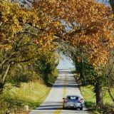 PCA Chesapeake's 2020 Baltimore County Fall Colors Tours -- Nov. 7, 8, 14