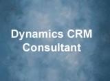 Dynamics CRM Consultant