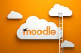 Moodle Developer