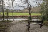 Bench with a view, Powerscourt, Enniskerry, Ireland