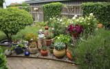 Årets sommarblommor är planterade!