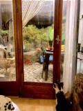Escroquerie aux Fenêtres Portugaises