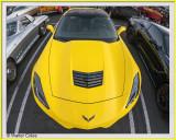 Corvette WA DD 10-5-19 (10) G CC S2 Frame w.jpg