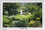 Balboa Park SD 11-14-19 (2) CC S2 Frame w.jpg