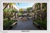 Balboa Park SD 11-14-19 (3) CC S2 Frame w.jpg