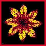 Leaf Circle Mosaic Frame w.jpg