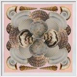 Shells Pams Collage 4-30-20 (b) CC Frame w.jpg