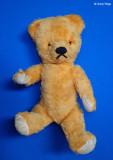P6100995 vintage bear