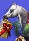Mon Nafa Rani Christmas