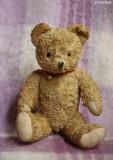 9725- vintage bear