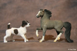 Breyer Stablemate G2 flocked Morgan and Jack Russell Terrier