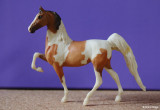 Breyer Little Bits Paddock Pal Saddle Club Saddlebred - bay pinto