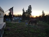 12 - Goose Corral Camp.jpg