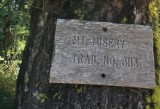 15 - Mt. Misery Trail.jpg