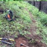 75 - clearing trail.jpg