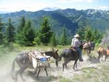Goat Mtn. Trail.jpg