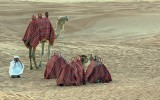 The Camel driver with the camels