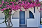 The house with the bougainvillea.