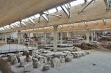 Akrotiri (preistoric city) - Santorini