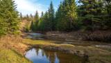 Late Afternoon, Blackmud Creek