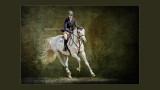 PPOC Equine Accreditation (April 2014)