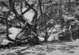 190918-0610.jpg