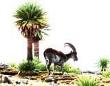 Mammals in Ethiiopian Somali- and Gondar Regions 2018